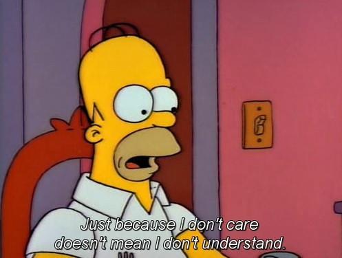 Homer, my brain twin.